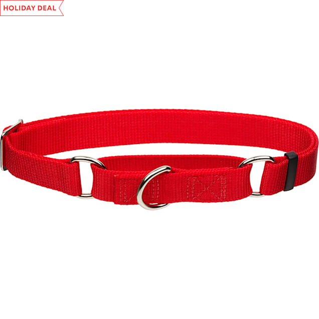 """Coastal Pet No! Slip Personalized Dog Collar in Red, 1"""" Width - Carousel image #1"""