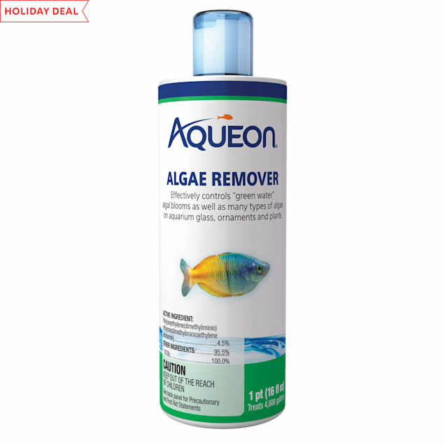 Aqueon Algae Remover, 16 OZ - Carousel image #1