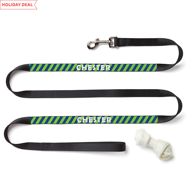 Custom Personalization Solutions Personalized Striped Dog Leash - Carousel image #1