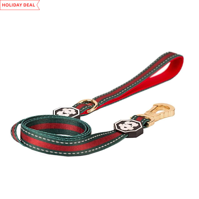 Fresh Pawz The G-Stripe Dog Leash, Small - Carousel image #1