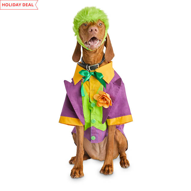 Bootique DC Joker Dog Costume, X-Small - Carousel image #1
