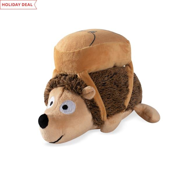 PetShop by Fringe Studio Back To School Hedgehog Plsh Dog Toy - Carousel image #1
