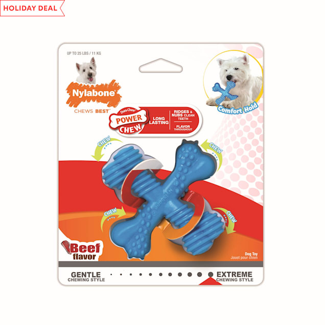 Nylabone Comfort Hold X Bone Power Chew Dog Toy, Small - Carousel image #1
