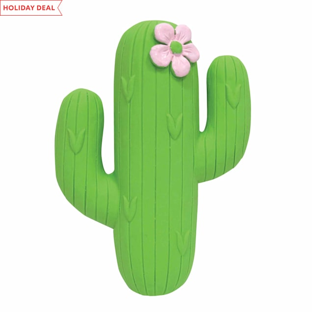 foufouBRANDS fouFIT Cactus Fiesta Chew Dog Toy - Carousel image #1