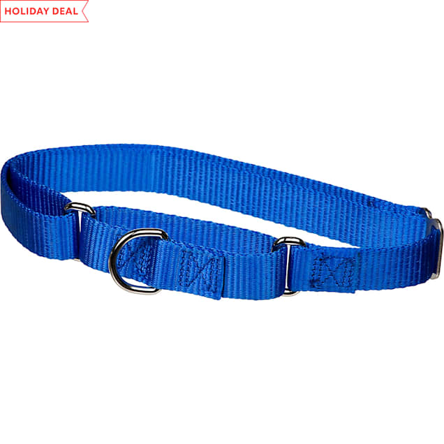"X-tra Control Collar Blue Large 19""-30""  1"" width - Carousel image #1"