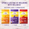 Wellness Complete Health Natural Lamb, Barley Meal Recipe Dry Dog Food, 30 lbs. - Thumbnail-10