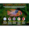Omega One Veggie Rounds, 4.2 oz. - Thumbnail-2