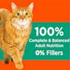 Iams ProActive Health Hairball Care Chicken and Salmon Adult Dry Cat Food, 16 lbs. - Thumbnail-8
