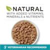 Purina ONE Natural True Instinct Chicken & Turkey Recipe in Gravy Wet Cat Food, 3 oz., Case of 24 - Thumbnail-4