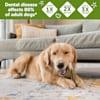 Whimzees Medium Brushzees Dog Treats - Thumbnail-7