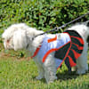 Pets First Miami Hurricanes Cheerleading Outfit, X-Small - Thumbnail-5