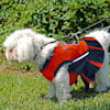 Pets First Syracuse Orange Cheerleading Outfit, X-Small - Thumbnail-5