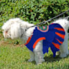 Pets First Florida Gators Cheerleading Outfit, X-Small - Thumbnail-5