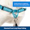 Petsafe Deluxe Easy Walk Harness in Apple, Large - Thumbnail-3