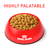 Royal Canin Veterinary Diet Feline Urinary SO Dry Cat Food, 17.6 lbs. - Thumbnail-5