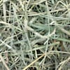Oxbow Hay Blends Western Timothy and Orchard, 90 oz. - Thumbnail-6
