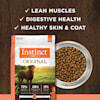 Instinct Original Grain-Free Recipe with Real Salmon Freeze-Dried Raw Coated Dry Dog Food, 20 lbs. - Thumbnail-6
