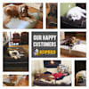 """Kopeks Orthopedic Brown Bed with Pillow for Dogs, 50"""" L X 34"""" W X 7"""" H - Thumbnail-8"""