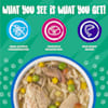 Weruva Classics Jammin' Salmon with Chicken & Salmon in Pumpkin Soup Wet Dog Food, 14 oz., Case of 12 - Thumbnail-4