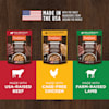 Instinct Healthy Cravings Grain-Free Cuts & Gravy Recipe in Savory Gravy Variety Pack Wet Dog Food, 3 oz., Count of 12 - Thumbnail-5