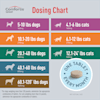 Comfortis Chewables for Dogs 20 to 40 lbs. and Cats 12.1 to 24 lbs, 6 Month Supply - Thumbnail-7