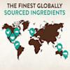 Wellness CORE Tiny Tasters Tuna & Salmon Pate Grain Free Wet Cat Food, 1.75 oz., Case of 12 - Thumbnail-9