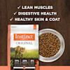 Instinct Original Grain-Free Recipe with Real Salmon Freeze-Dried Raw Coated Dry Cat Food, 10 lbs. - Thumbnail-9
