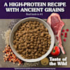 Taste of the Wild Ancient Mountain with Roasted Lamb and Ancient Grains Dry Dog Food, 28 lbs. - Thumbnail-6