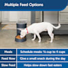 PetSafe Second Generation Dog and Cat Automatic Smart Feeder - Thumbnail-4