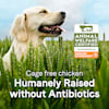 Canidae Sustain Premium Recipe with Cage-Free Chicken Adult Dry Dog Food, 18 lbs. - Thumbnail-5