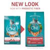 Purina ONE Natural Tender Selects Blend With Real Salmon Dry Cat Food, 16 lbs. - Thumbnail-2