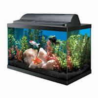Aqueon Aquarium Kit 10 Gallon