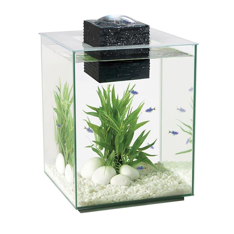 Fluval Chi Aquarium Kit 5 Gallons Petco