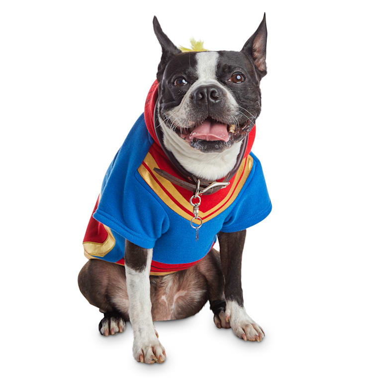 Bootique Captain Marvel Dog Costume Large Petco These officially licensed captain america costumes are replicas of the ones seen. bootique captain marvel dog costume large