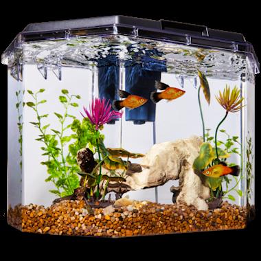 Imagitarium Semi Hexagonal Aquarium Kit 6 7 Gal Petco