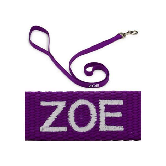 "Coastal Pet 3/4"" Personalized Nylon Leash in Purple - Carousel image #1"