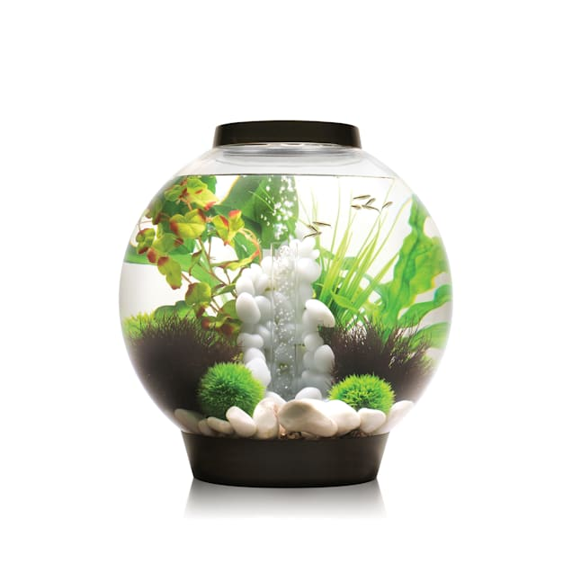 biOrb 8 Gallon Aquarium Kit with Light, Black - Carousel image #1