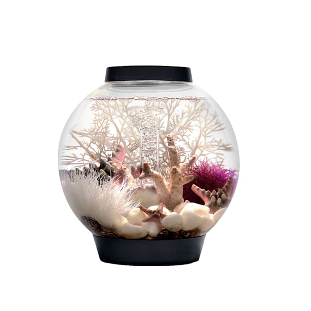 baby biOrb 4 Gallon Aquarium Kit with Light, Black - Carousel image #1