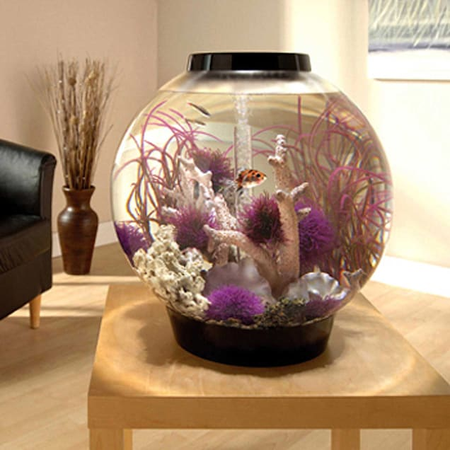 biOrb 16 Gallon Mega Aquarium Kit with Light, Black - Carousel image #1