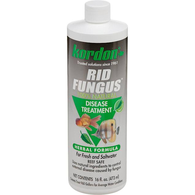 Kordon Rid Fungus - Carousel image #1