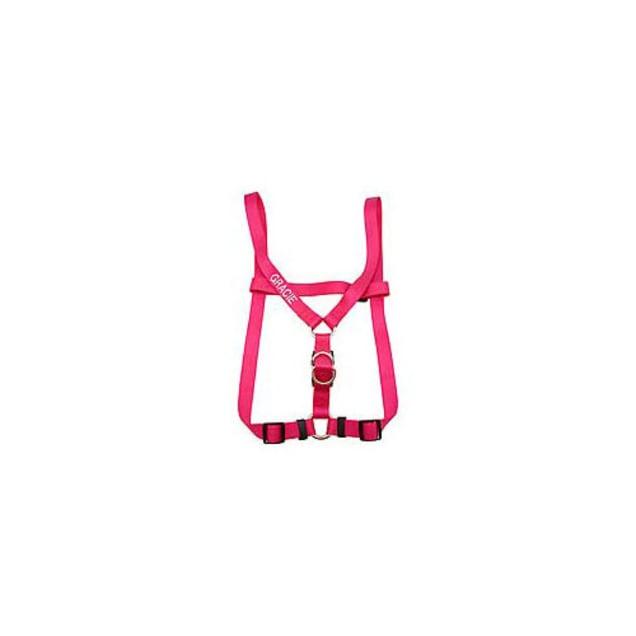 Coastal Pet Large Personalized Harness in Flamingo Pink - Carousel image #1