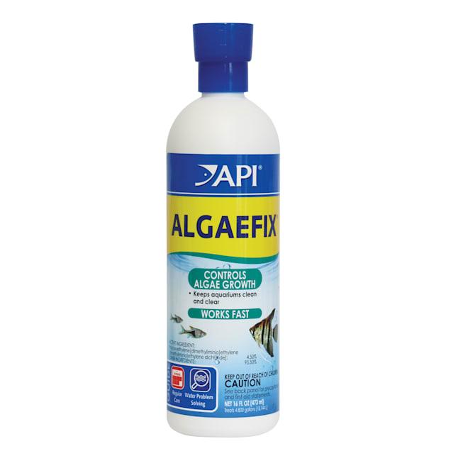 API Algaefix, 4 oz. - Carousel image #1