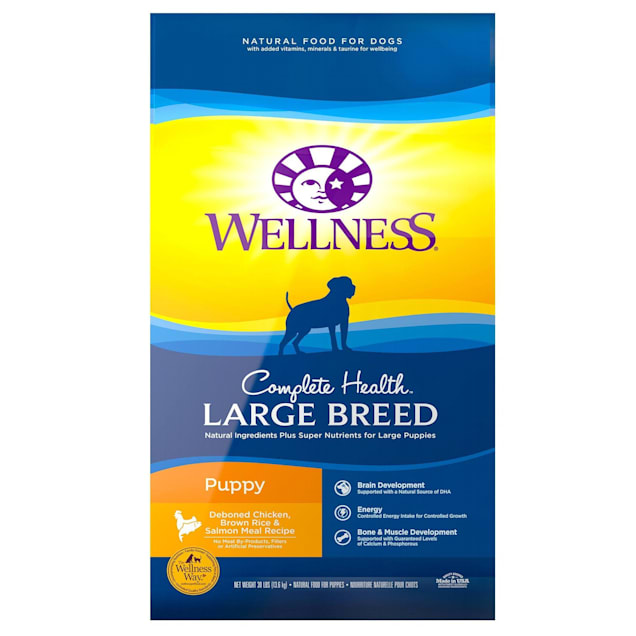 Wellness Complete Health Natural Large Breed Puppy Health Recipe Dry Dog Food, 30 lbs. - Carousel image #1