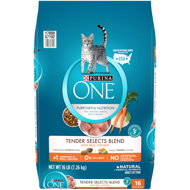 Purina ONE Natural Tender Selects Blend With Real Chicken Dry Cat Food, 16 lbs., Bag - Carousel image #1