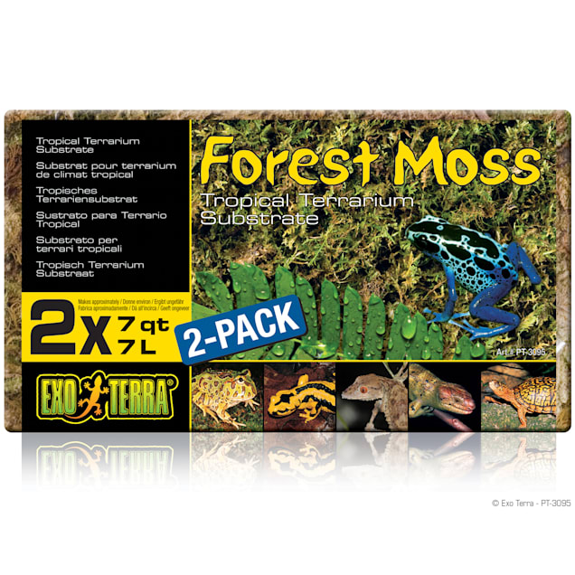 Exo-Terra Forest Moss Terrarium Substrate, 7 Quart, Pack of 2 - Carousel image #1