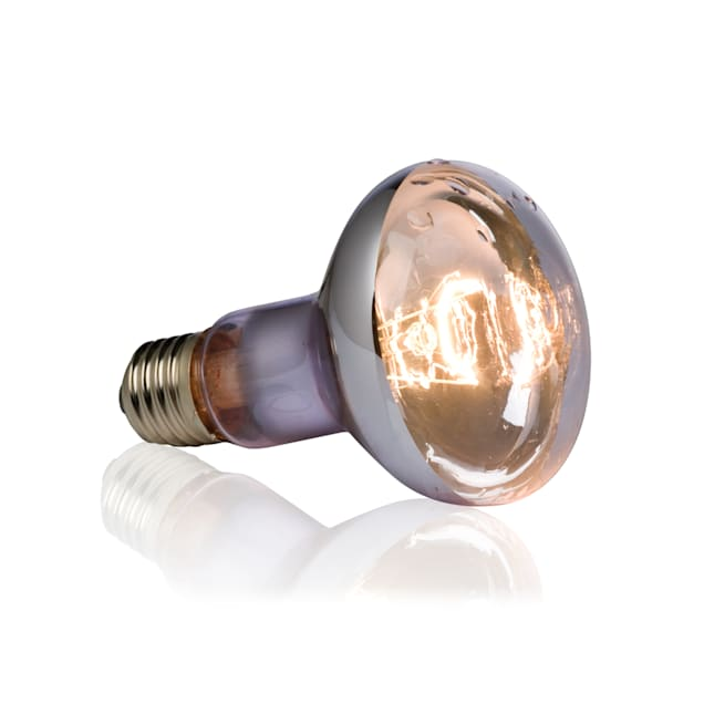 Exo-Terra Swamp Basking Spot Lamp, 75W - Carousel image #1