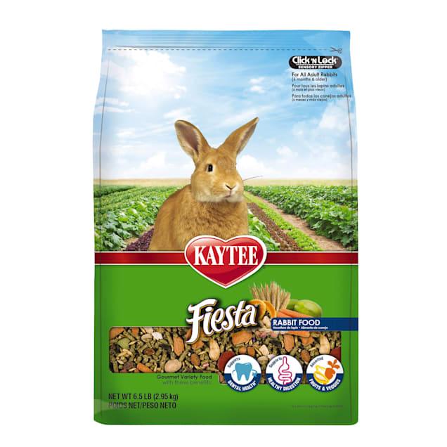 Kaytee Fiesta Food for Rabbits - Carousel image #1