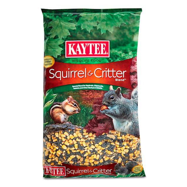 Kaytee Squirrel & Critter Blend Wildlife Food - Carousel image #1