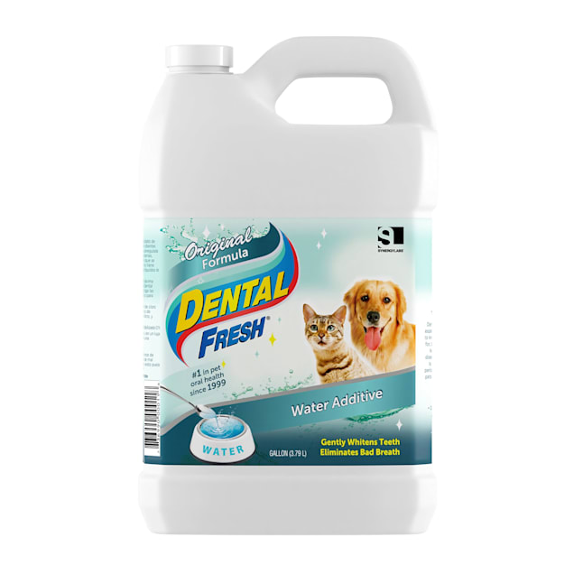 Synergy Labs Dental Fresh for Dogs & Cats - Carousel image #1
