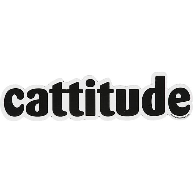 Imagine This Cattitude Car Magnet - Carousel image #1